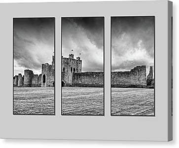 Trim Castle Triptych  Canvas Print