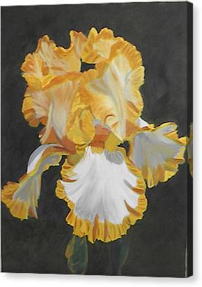Trimmed In Yellow 2 Canvas Print by Robert Tower