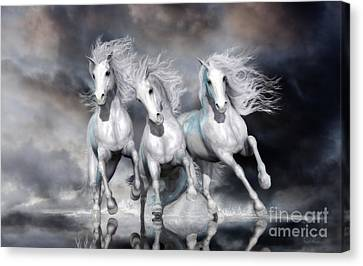 Trinity Galloping Horses Blue Canvas Print by Shanina Conway