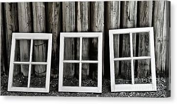 Canvas Print featuring the photograph Trio by Brad Allen Fine Art