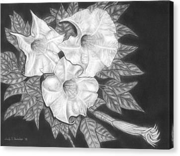 Trio Of Heavenly Blossoms Canvas Print by Nicole I Hamilton