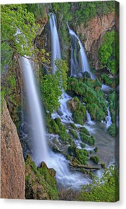Triple Falls Vertical Canvas Print by Scott Mahon