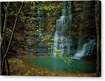 Tripple Falls Canvas Print by Iris Greenwell