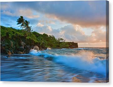 Michael Sweet Canvas Print - Tropic Dreams by Michael Sweet