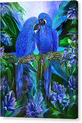Tropic Spirits - Hyacinth Macaws Canvas Print