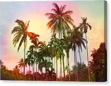 Tropical Sunset Canvas Print - Tropical 11 by Mark Ashkenazi