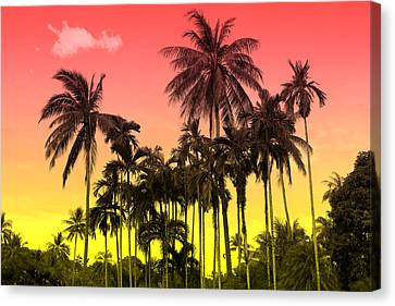Tropical 9 Canvas Print by Mark Ashkenazi