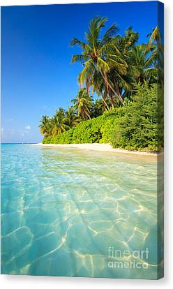 Getty Canvas Print - Tropical Beach - Maldives by Matteo Colombo