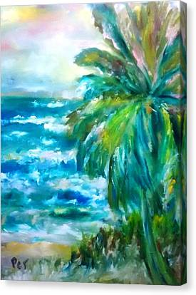 Patricia Taylor Canvas Print - Tropical Beach With Palm Tree by Patricia Taylor