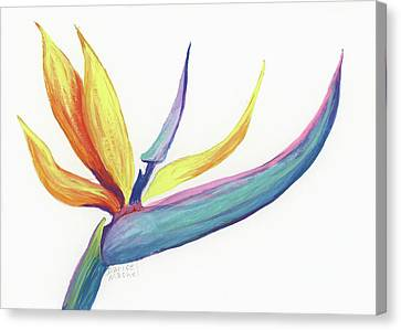 Canvas Print featuring the painting Tropical Bird Of Paradise by Darice Machel McGuire