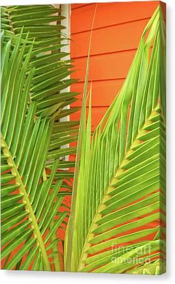 Beach Theme Decorating Canvas Print - Tropical Bliss by Mary Ann Tardif
