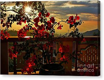 Tropical Bougainvillea Sunset By Kaye Menner Canvas Print