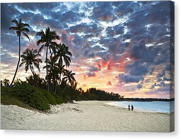 Tropical Caribbean White Sand Beach Paradise At Sunset Canvas Print by Dave Allen