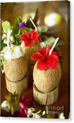 Tropical Cocktail Canvas Print by Kyle Rothenborg - Printscapes