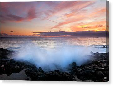 Tropical Explosion Canvas Print by Mike  Dawson