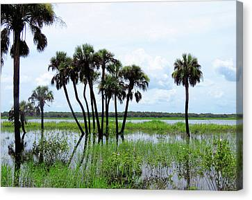 Tropical Flooding Canvas Print