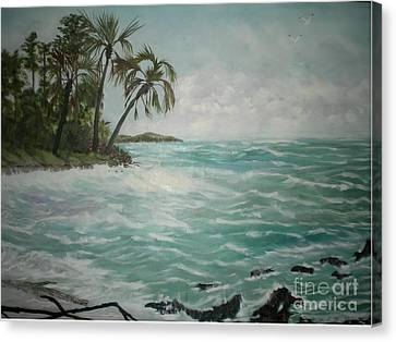 Tropical Island Canvas Print by Hal Newhouser