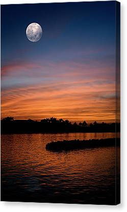 Canvas Print featuring the photograph Tropical Moon by Laura Fasulo