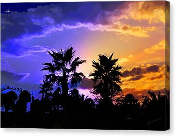 Canvas Print featuring the photograph Tropical Nightfall by Francesa Miller