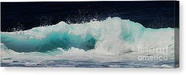 Tropical Ocean Surf Canvas Print by Scott Cameron