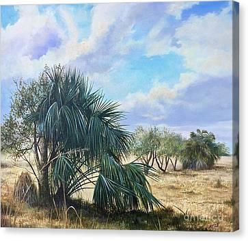 Tropical Orange Grove Canvas Print