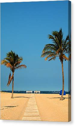 Tropical Paradise Canvas Print by Mandy Wiltse