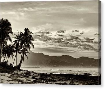 Tropical Paradise  Canvas Print by Skip Nall