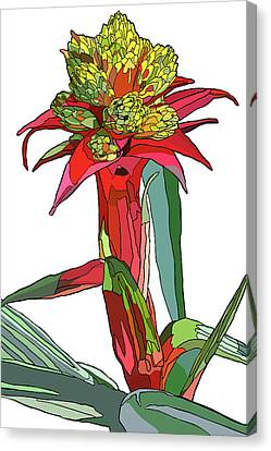 Tropical Reds Canvas Print by Jamie Downs