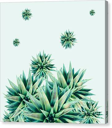 Red Leaf Canvas Print - Tropical Stars  by Mark Ashkenazi