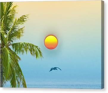 Tropical Sun Canvas Print by Bill Cannon