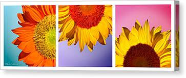 Tropical  Sunflowers Canvas Print