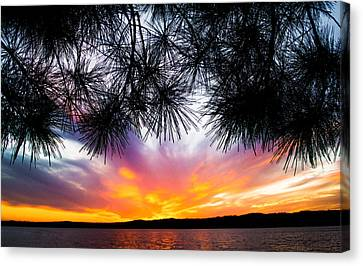 Tropical Sunset  Canvas Print by Parker Cunningham