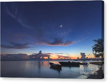 Tropical Twilight Canvas Print by Charles Kozierok