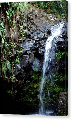 Canvas Print featuring the photograph Tropical Waterfall by Gary Wonning