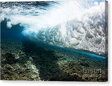 Tropical Wave Curl Canvas Print by Dave Fleetham - Printscapes
