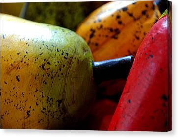 Tropical Wooden Fruits Canvas Print by Valmir Ribeiro