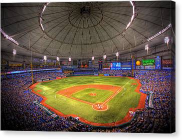 Devil Ray Canvas Print - Tropicana Field by Shawn Everhart