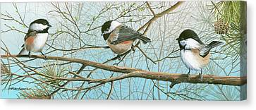 Troublesome Trio Canvas Print by Mike Brown