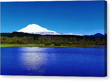 Trout Lake Foreground Mount Adams Canvas Print by Jeff Swan