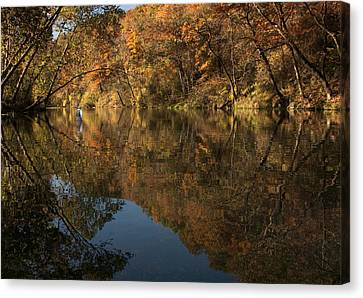 Color Me Trout Canvas Print - Trout Season At Bennett Spring by Mitch Spence