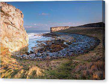 Trow Rocks Sea Bay Canvas Print by David Head