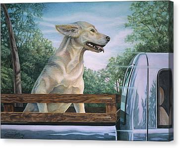 Truck Queen  Canvas Print by Craig Gallaway
