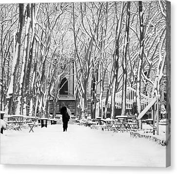 Trudging Through The Snow Canvas Print by Andrew Kazmierski