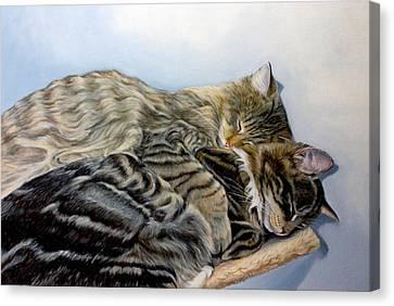 True Love Canvas Print by Susana Falconi