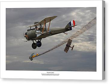 Trump Card - Titled Canvas Print by Mark Donoghue