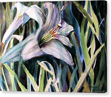 Trumpet Lily Canvas Print