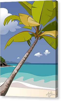 Trunk Bay Canvas Print by Andy Bauer