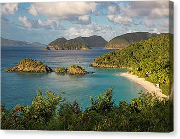 Trunk Bay Morning Canvas Print by Adam Romanowicz