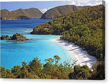 Virgin Islands Canvas Print - Trunk Bay St John Us Virgin Islands by George Oze