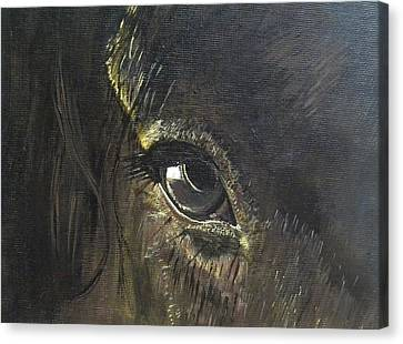 Trusting Eye Canvas Print